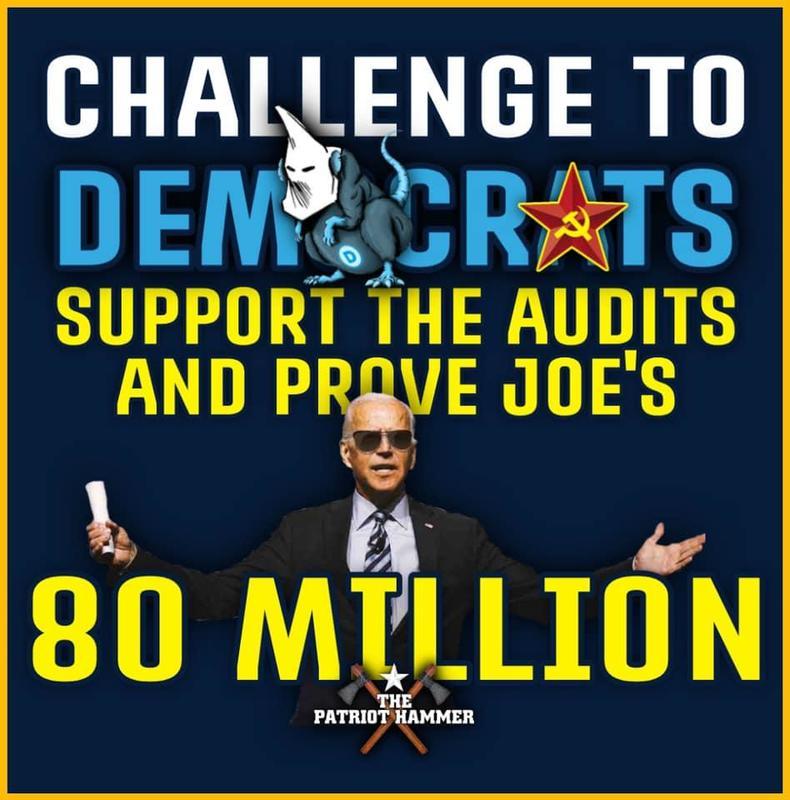 Prove Joe's 80 Million Votes!